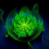 Green fractal flower — Stock Photo