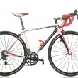 Race road bike — Stock Photo #50135265
