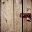 Royalty-Free Stock Photo: Vintage old wood background with lock
