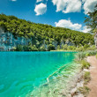 Beautiful landscape in Plitvice Lakes National Park in Croatia — Stock Photo #12146705