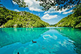 Beautiful landscape in the Plitvice Lakes National Park in Croatia — Stock Photo