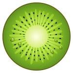 Half circle fruit kiwi — Stock Vector #12676529