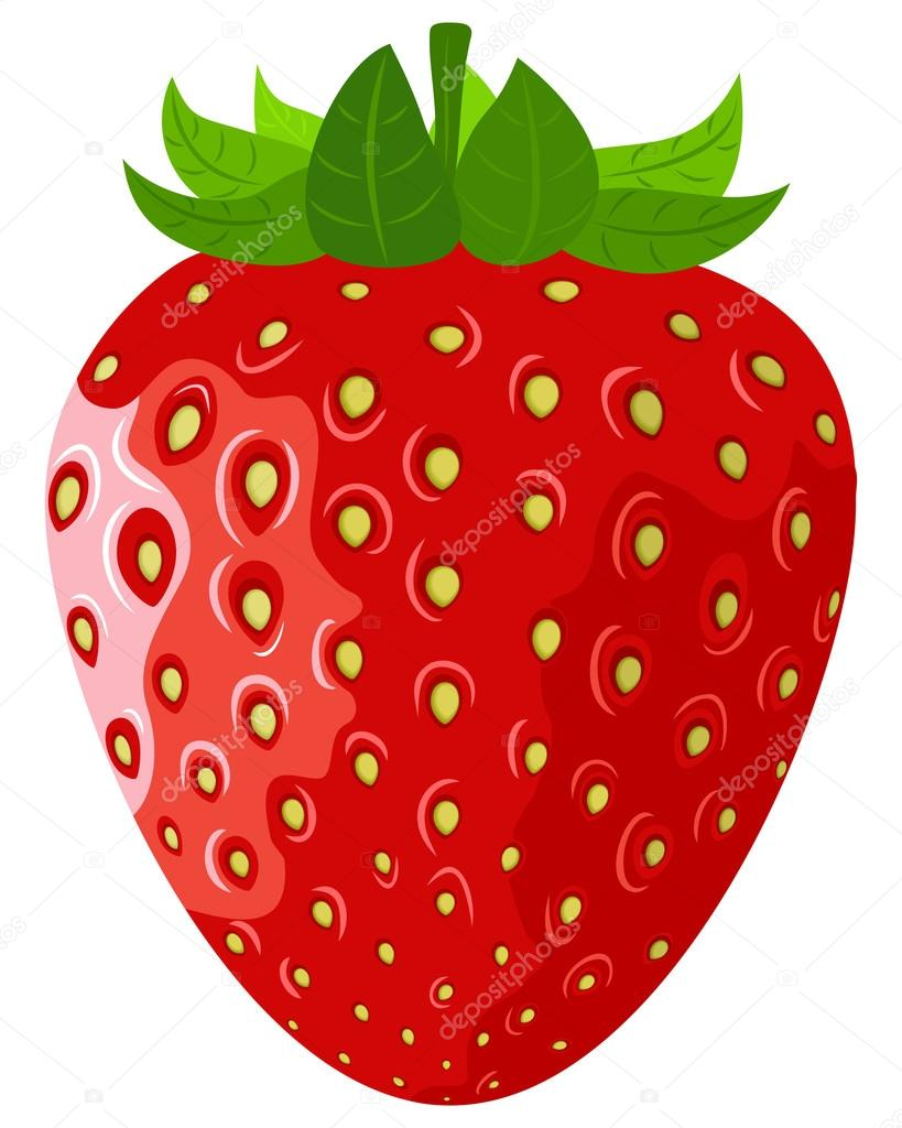 Рисунки ягод виктории