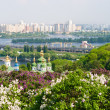 View from the botanical garden in Kyiv — Stock Photo