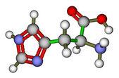 Esansiyel amino asit histidin moleküler yapısı — Stok fotoğraf