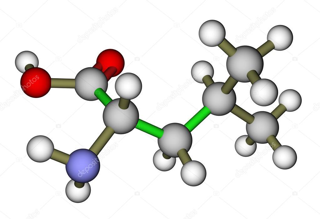 aminoacidos esenciales leucina pdf free