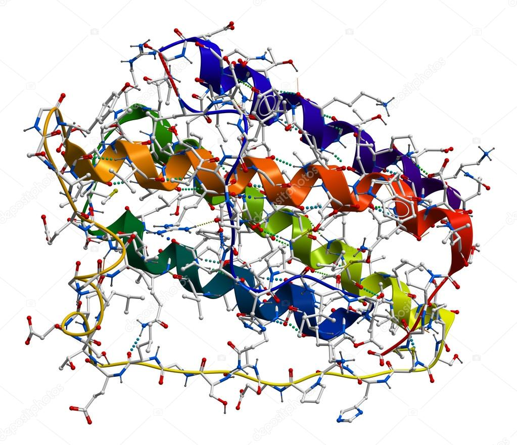Leptin, the human obesity protein that regulate an appetite. 3D molecular structure  Stock Photo #13283896