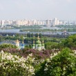 View from the botanical garden in Kyiv, Ukraine — Stock Photo