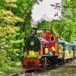 Steam locomotive on Kiev Children — Stock Photo