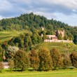 View of Ortenberg castle in The Black Forest. Germany — Stock Photo
