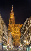 View of Strasbourg Cathedral (Notre-Dame de Strasbourg) — Stock Photo