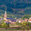 View of Ohlsbach town in the Black Forest mountains — Stock Photo
