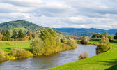View of Kinzig river in the Black Forest mountains. Germany - Ba — Stock Photo