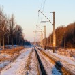 Stock Photo: Single-track electrified (25 kV, 50 Hz) railway line in Ukraine