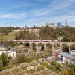 Train on viaduct in Luxembourg against background of European or — Stock Photo