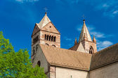 St. Stephan's Cathedral of Breisach - Baden-Wurttemberg, German — Стоковое фото