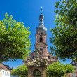 Fountain and Church of St. Alexander in Rastatt - Baden-Wurttemb — Stock Photo