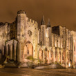 Palais des Papes in Avignon, UNESCO heritage site, France — Stock Photo #38980821