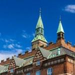 Roof of Copenhagen City Hall - Denmark — Stock Photo #49179095