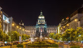 View of Czech National Museum in Prague — Stockfoto