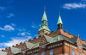 Roof of Copenhagen City Hall - Denmark — Stock Photo
