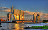 View of Rotterdam - Netherlands — Stock Photo