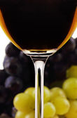 Wine collection: Red wine glass in front of blurred grapes — Foto Stock