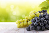 Wine collection: White and red grapes on table in vineyard — Stock Photo