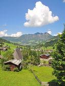 Inneralpbach,Alpbachtal,Tirol,Austria — Stock Photo