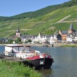 Stock Photo: Zell,Mosel River,Germany