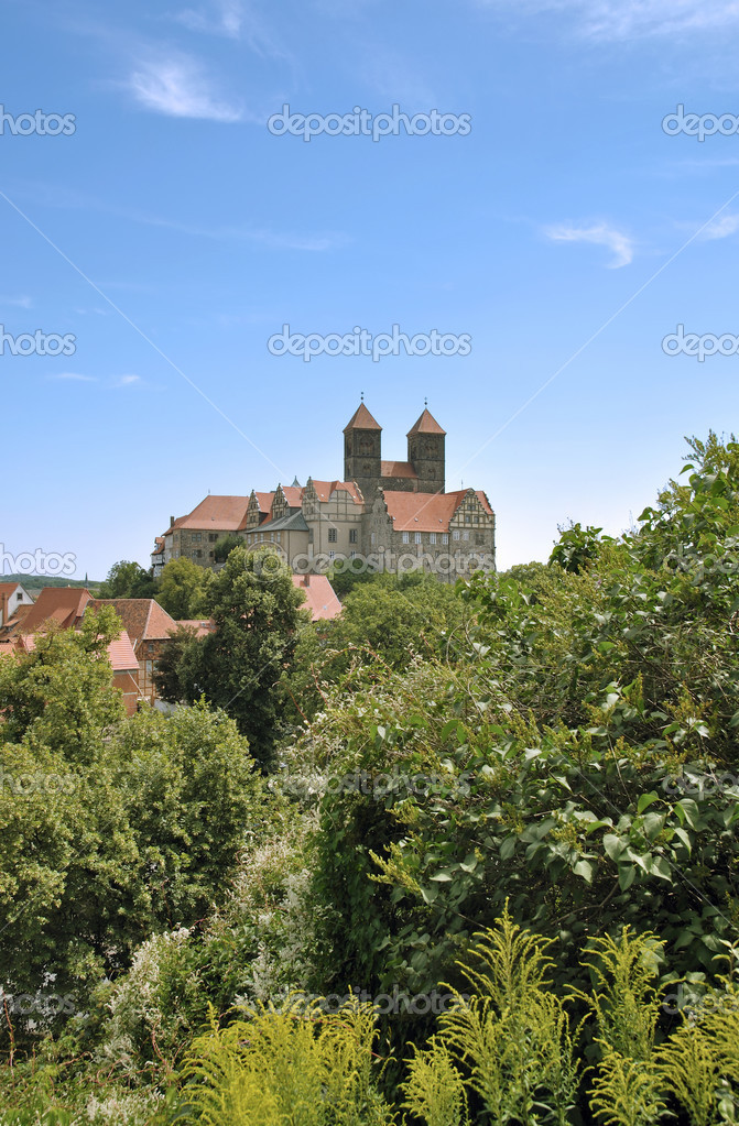 The famous Quedlinburg Castle,Harz Region,Germany  Stock Photo #13486751