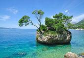 Roca de brela, makarska riviera, dalmacia, croacia — Foto de Stock
