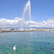 Stock Photo: Geneva,Lake Geneva,Switzerland