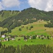 Stock Photo: Kleinwalsertal near Hirschegg,Vorarlberg,Austria