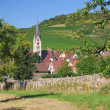Baden Wine Route,Black Forest,Germany — Stock Photo