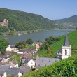 Stock Photo: Assmannshausen,Rheingau,Rhine River,Germany