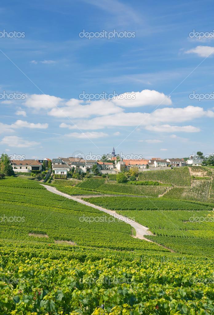 Cramant champagne region france stock photo eurotravel for Champagne region in france