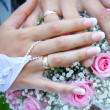 Hand of the groom and the bride — Stock Photo