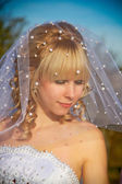 Portrait of the bride — Stock Photo