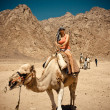 Girl on a funny camel. — Stock Photo