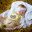 Stock Photo: Baby sleep in manger
