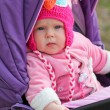 Cute baby sitting in the stroller — Stock Photo #49423103
