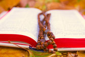 Rosary on the Bible — Stock Photo
