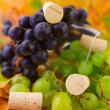 Grapes and corkscrew — Stock Photo