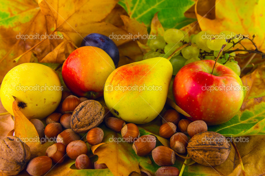Ripe pear nuts apple grapes fall fruits on leaves — Stock Photo ...