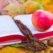 Rosary on Bible with apple and nuts — стоковое фото #12562445