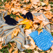 Fashion among autumn leaves — Stock Photo