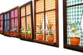 FLOWER WINDOWS — Stock Photo