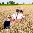 Children in field of wheat — Stock Photo