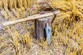 鎌を研ぐためのツール — ストック写真